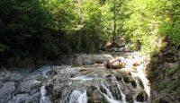 rezervatia naturala Tisita